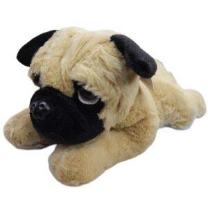 braon plisani pas koji lezi